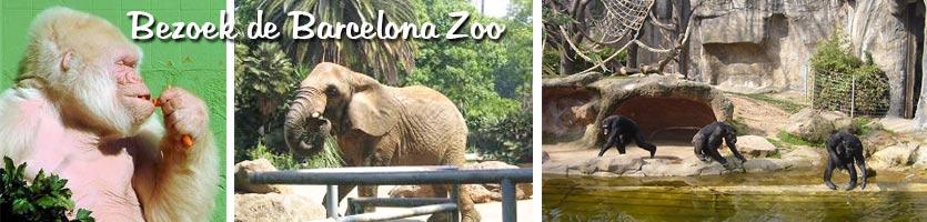 parc-de-la-ciutadella-zoo