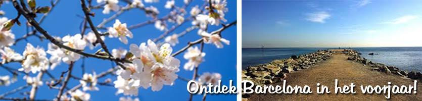 voorjaar-barcelona-strand